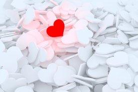 heart-2902953__340