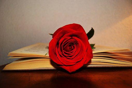 book-2287584__340